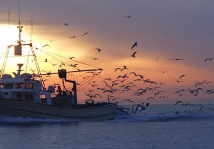ribarstvo_2